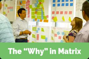 Why-in-Matrix